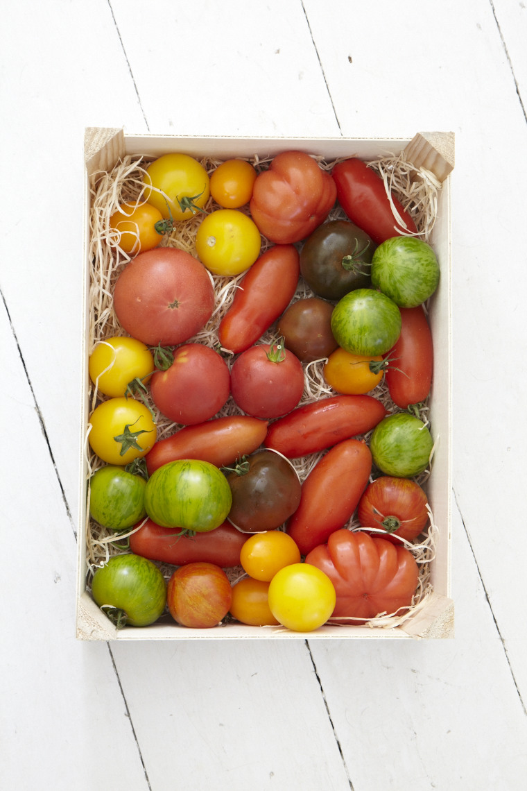 2015_09_17_Mary_Berry_Foolproof_Tomatoes_11300