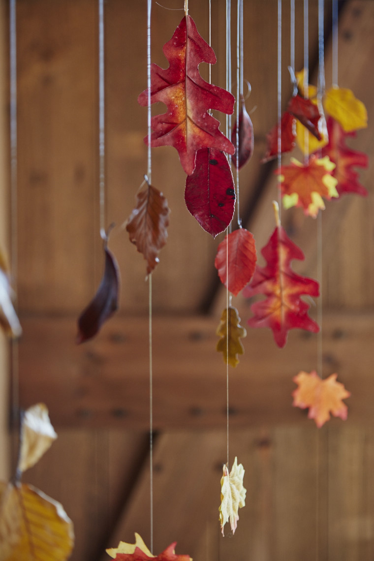 2016_05_24_LEW_Autumn16_Hanging_Leaves_0926